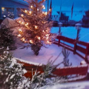 Euer Monte zur Weihnachtszeit